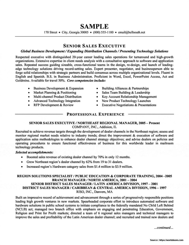 senior sales executive resume template