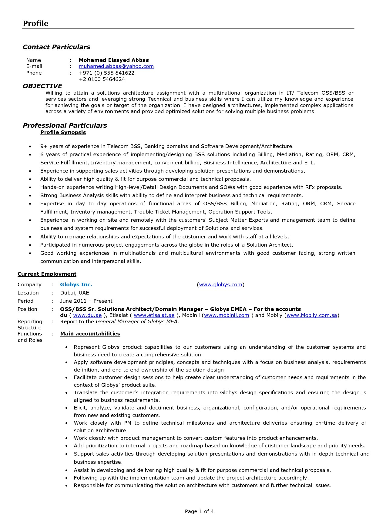 solution architect resume