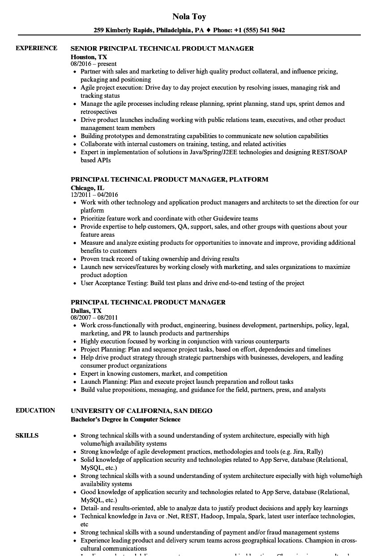 enterprise risk management resume google technical skills easy high school students 21410
