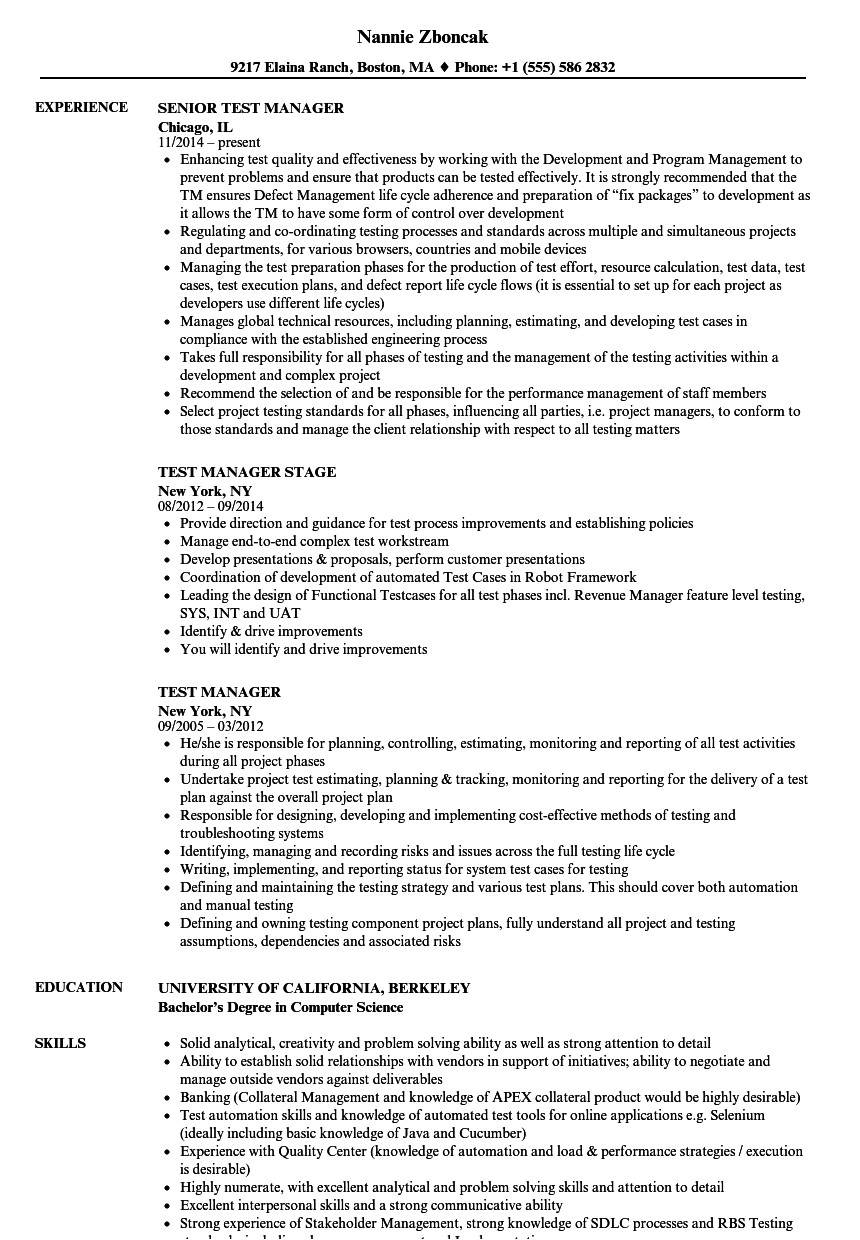 test manager resume sample