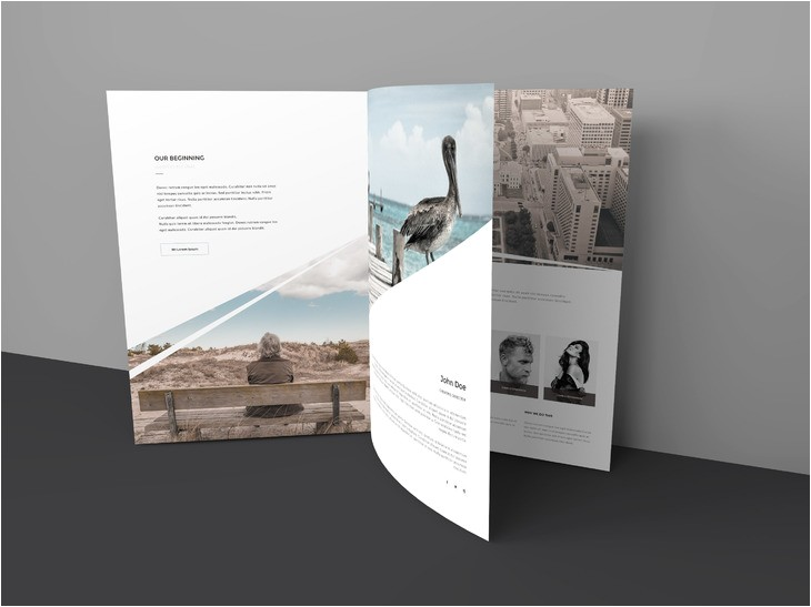 Three Page Brochure Template 15 Free Tri Fold Brochure Examples 2016 for Download