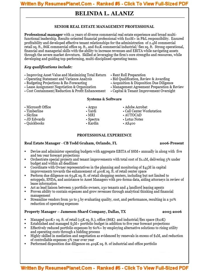 resume writing for it professionals