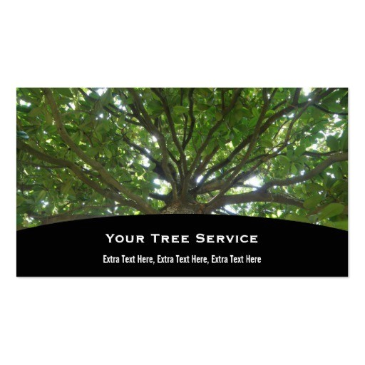 Tree Service Business Cards Templates 800 Tree Service Business Cards and Tree Service Business