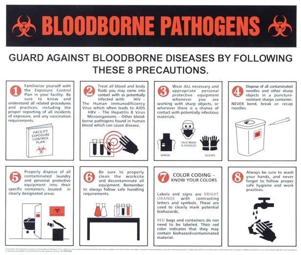 Bloodborne Pathogens Certificate Template 41 Best Saving Lives Images On Pinterest Health Nursing