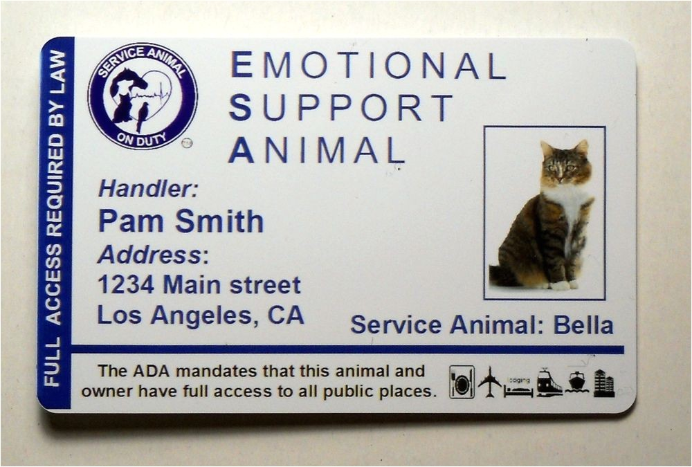 Emotional Support Dog Certificate Template Emotional Support Animal Id Card Badge Service Cat