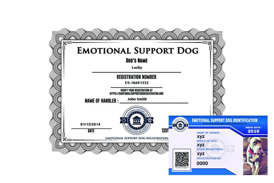emotional support dog registration basic