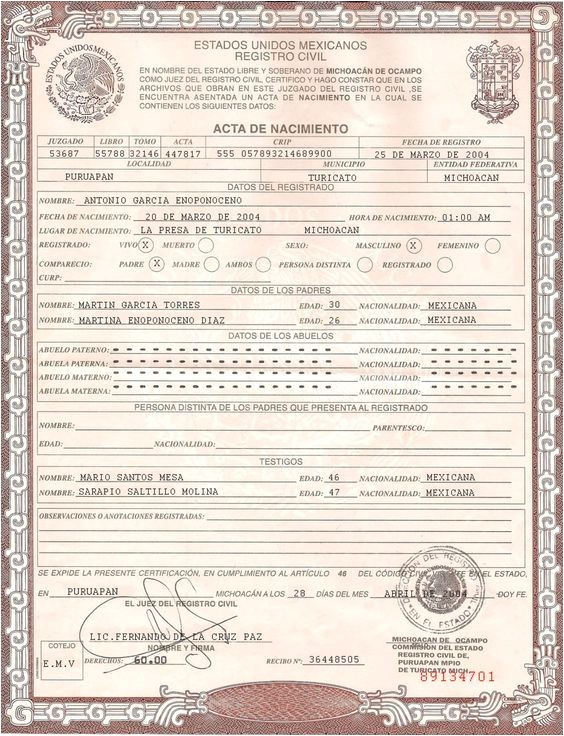 Mexican Death Certificate Template 25 Best Ideas About Fake Birth Certificate On Pinterest