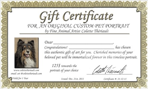 pet portrait gift certificates for