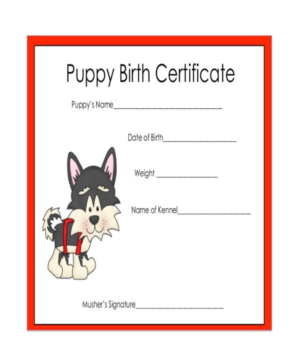 samples certificate
