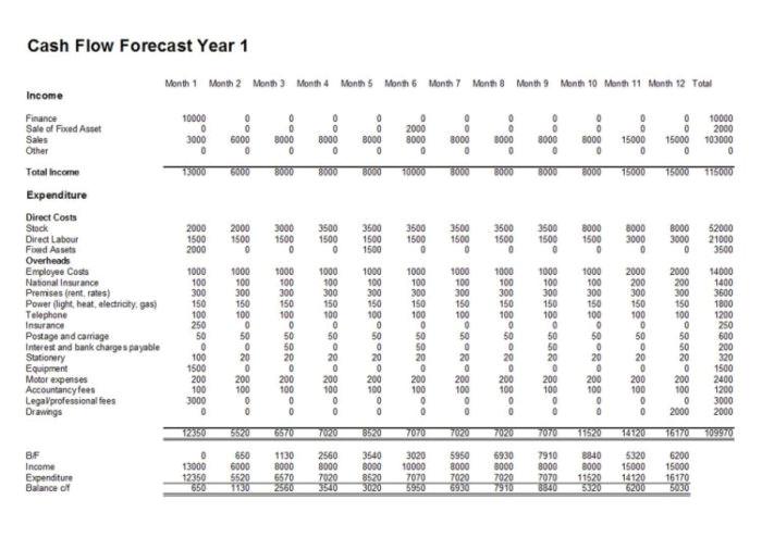 13 week cash flow forecast template