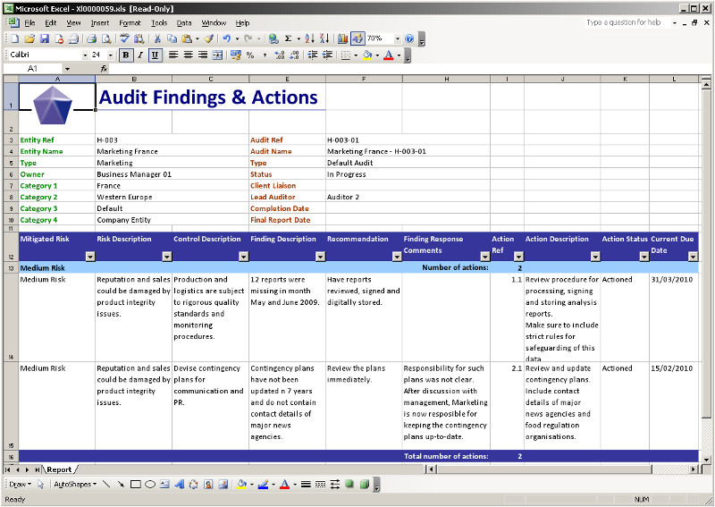 Audit Workpaper Template 28 Images Of Internal Audit Work Paper Template
