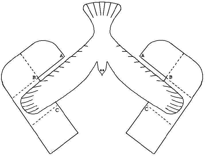 Balancing Bird Template Return to Instructions