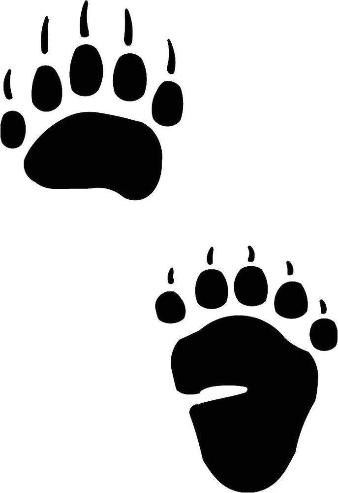 Bear Footprints Template Black Bear Track Footprint Sticker Paw Decal Ebay