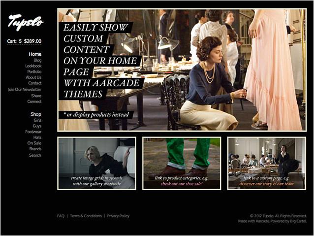 Big Cartel Store Templates Big Cartel Page Template Custom Home Aarcade