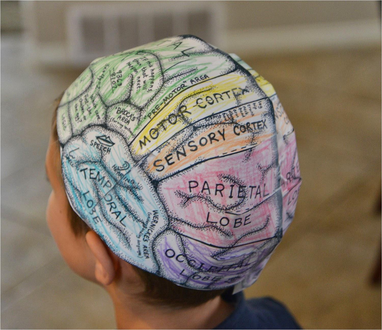 Brain Hat Template A School Of Fish Brain Hats Cerebral Cortex
