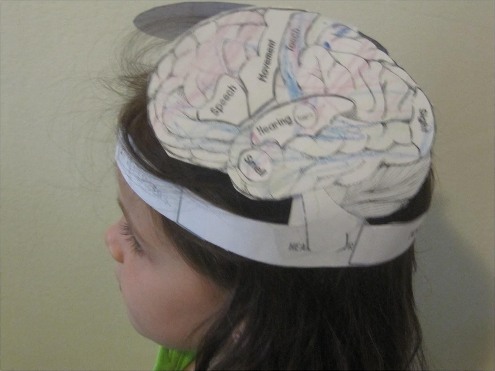 sunday science brain hat