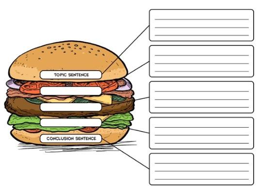 the good hamburger a writing lesson on creating paragraphs