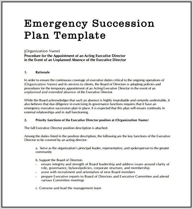 emergency succession plan 16980