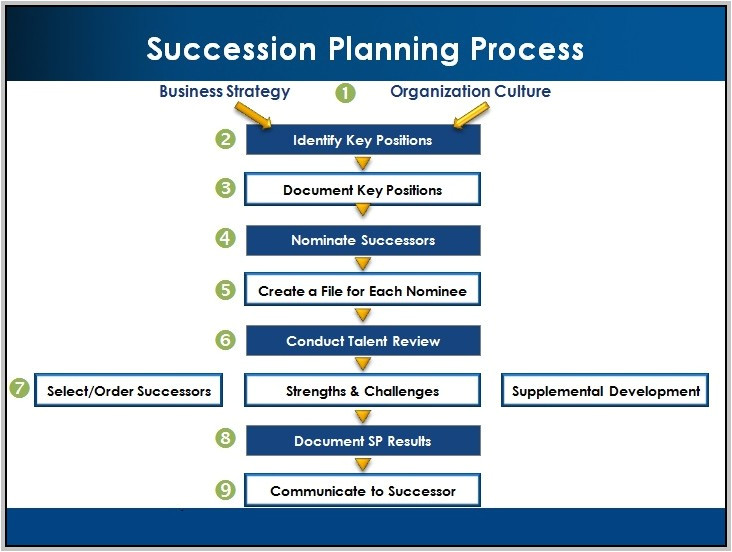 executive succession planning process 17002