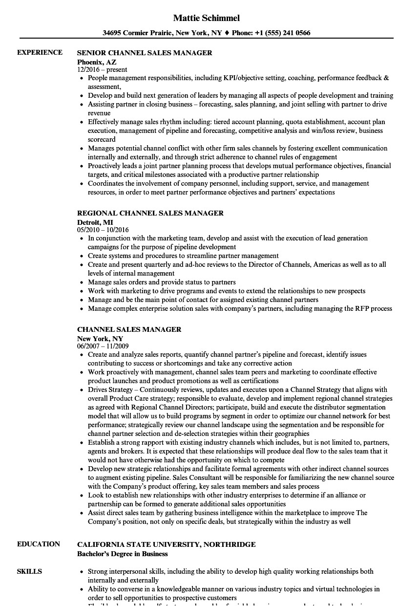 channel sales manager resume sample