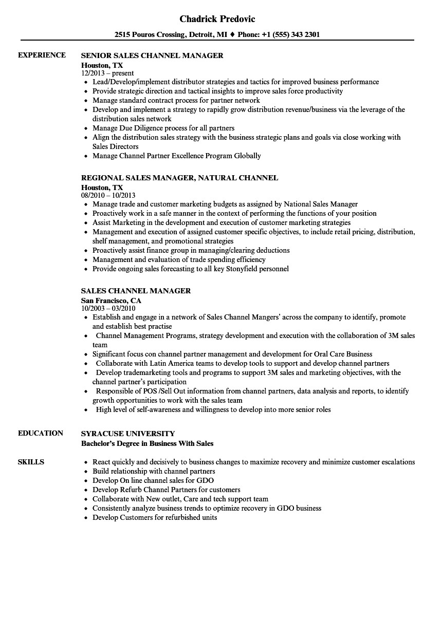 sales channel manager resume sample