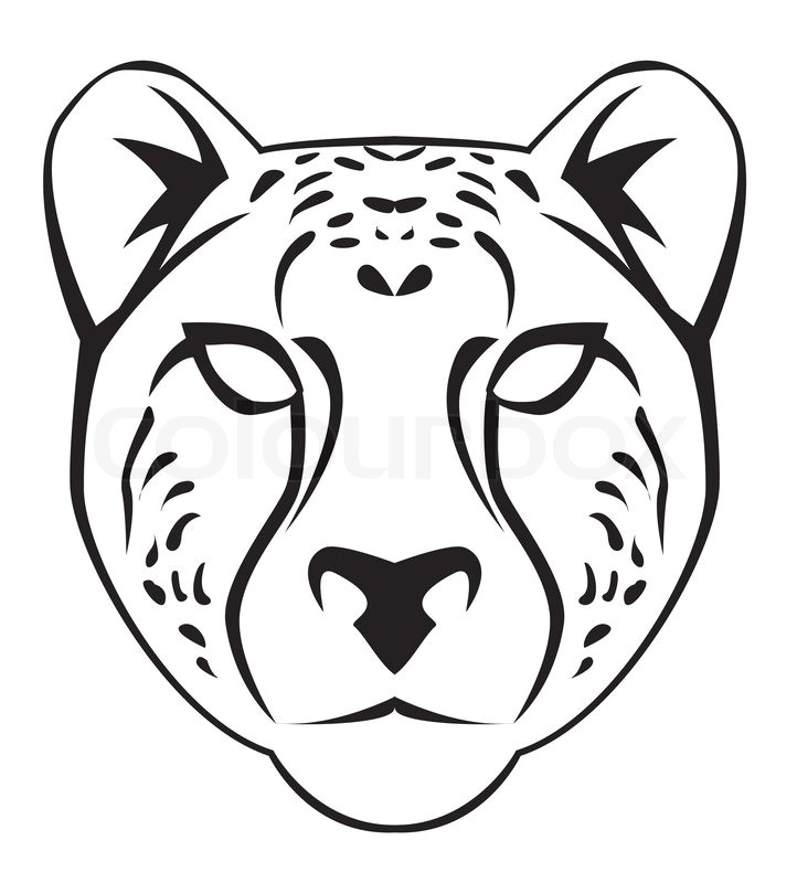 cheetah face vector 5751590