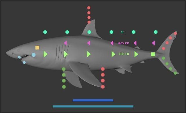 fish custom character template for cinema 4d