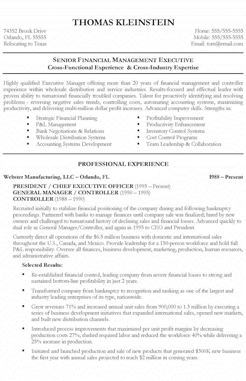 chief executive office resume example