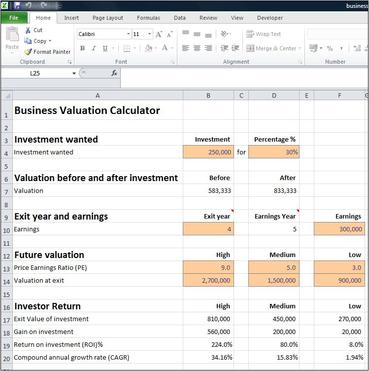 Company Valuation Template Excel Business Valuation Calculator for A Startup Plan Projections