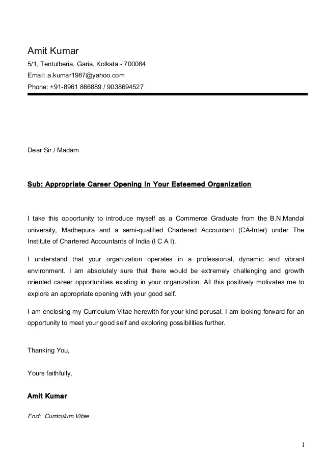 amit cv ca inter with cover letter