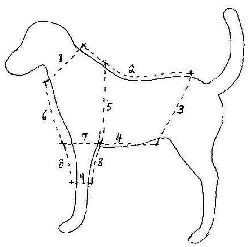 free online dog clothes patterns