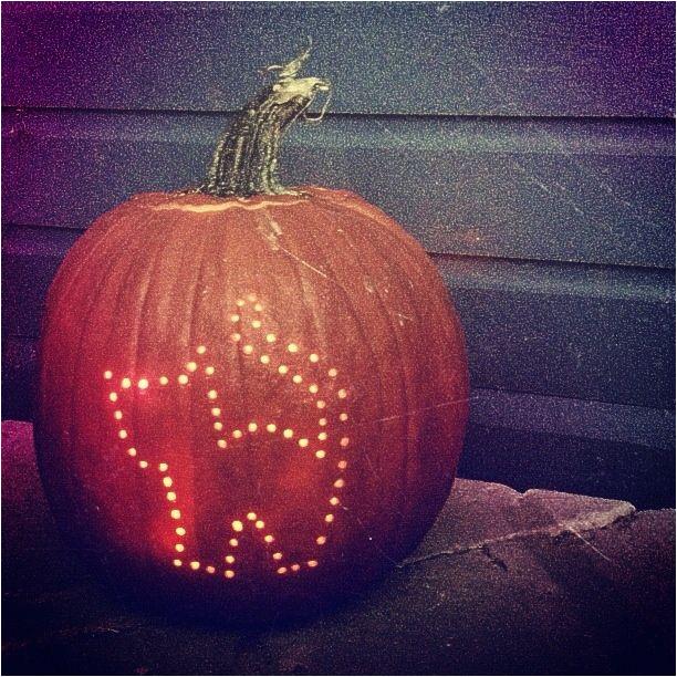 cat pumpkin carving