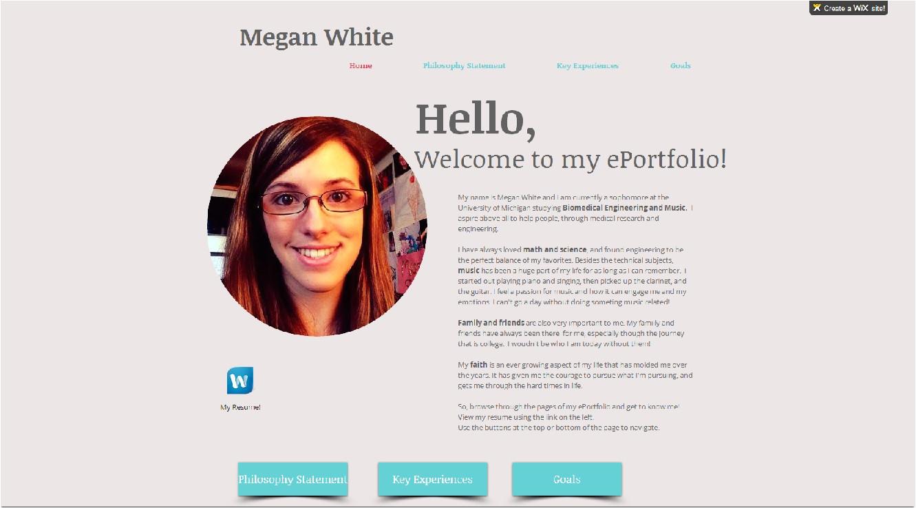 what are e portfolios for college students