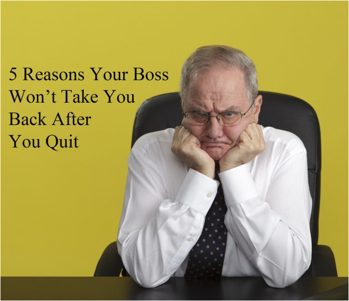 5 reasons your boss wont take you back after quiting
