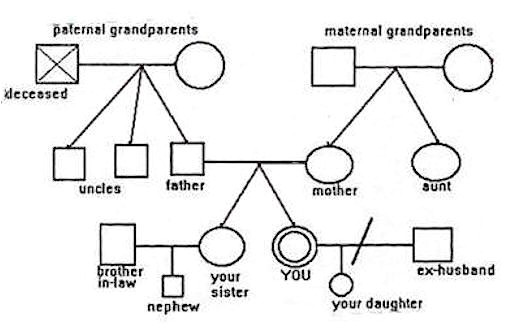 3 generation family genogram