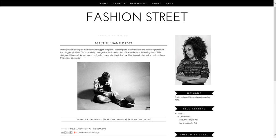 professional fashion blogger templates