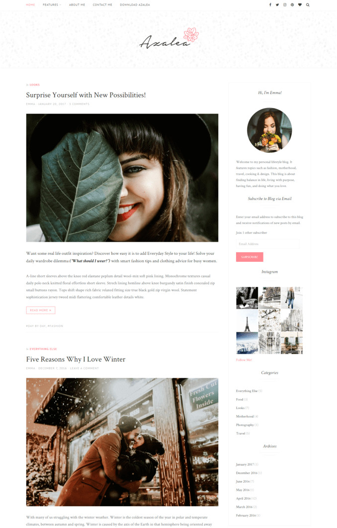 free best lifestyle blog themes