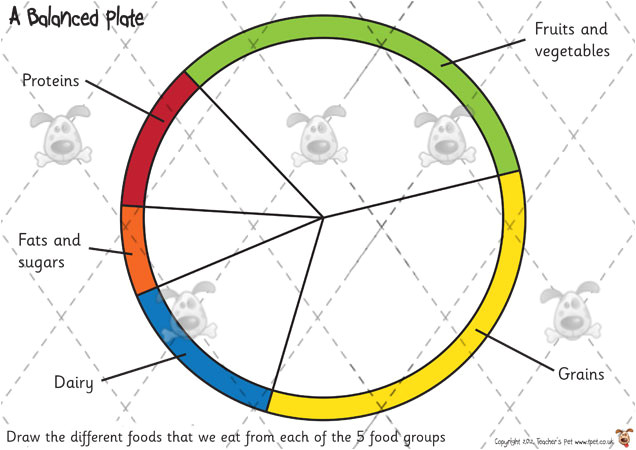 Food Wheel Template Teacher 39 S Pet Food Groups Drawing Premium Printable
