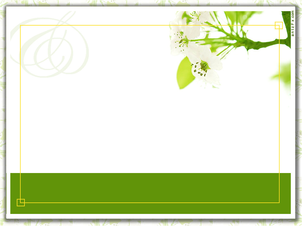 free ideas invitation card templates green color layout white background blank invited flower theme framed