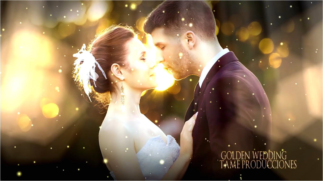 sony vegas golden wedding ll free