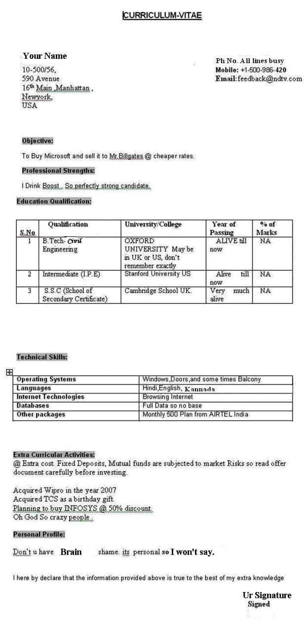 Funny Cv Template How True Latest Resume format