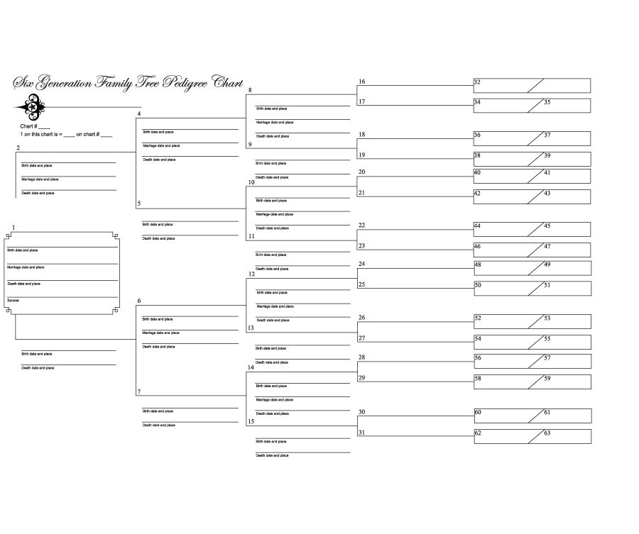 Geneology Templates 50 Free Family Tree Templates Word Excel Pdf