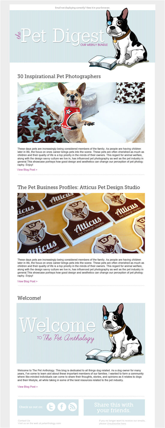 How to Design A Newsletter Template How to Design An Email Newsletter Template In 7 Simple Steps