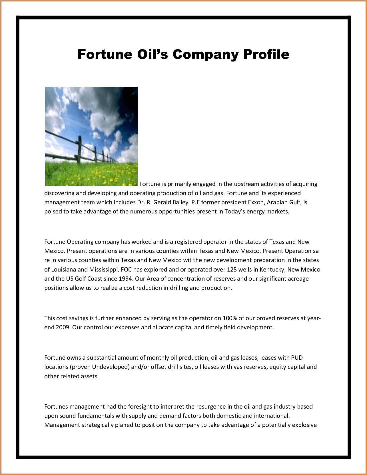 7 company profile example pdf sample memo format 108164 png