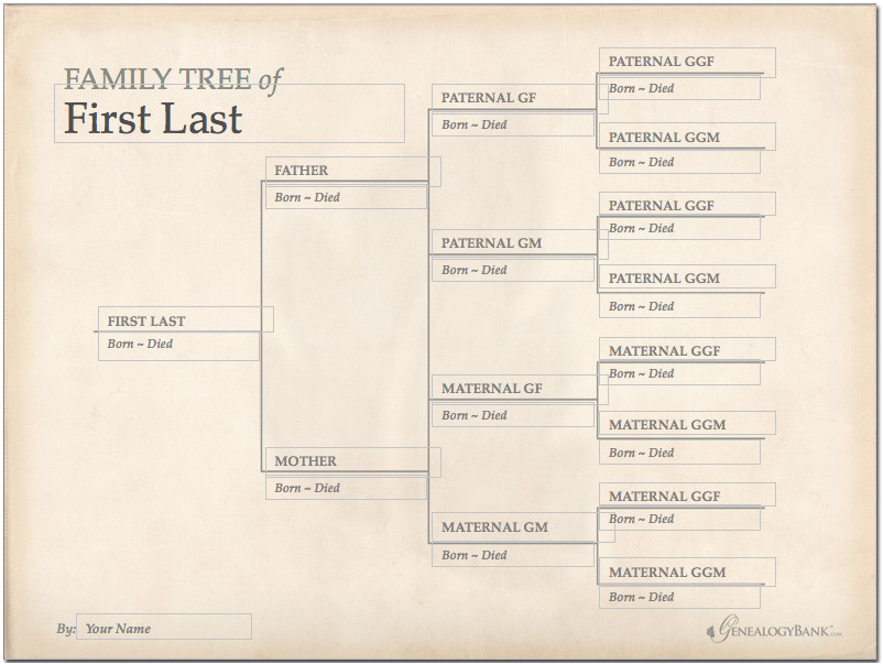 family tree template finder