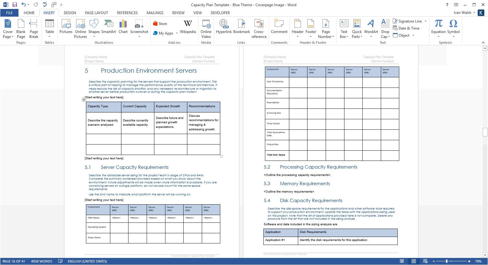 capacity plan template