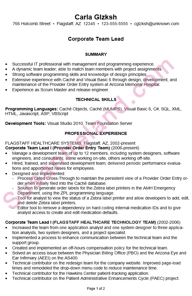 chronological resume example corporate team lead