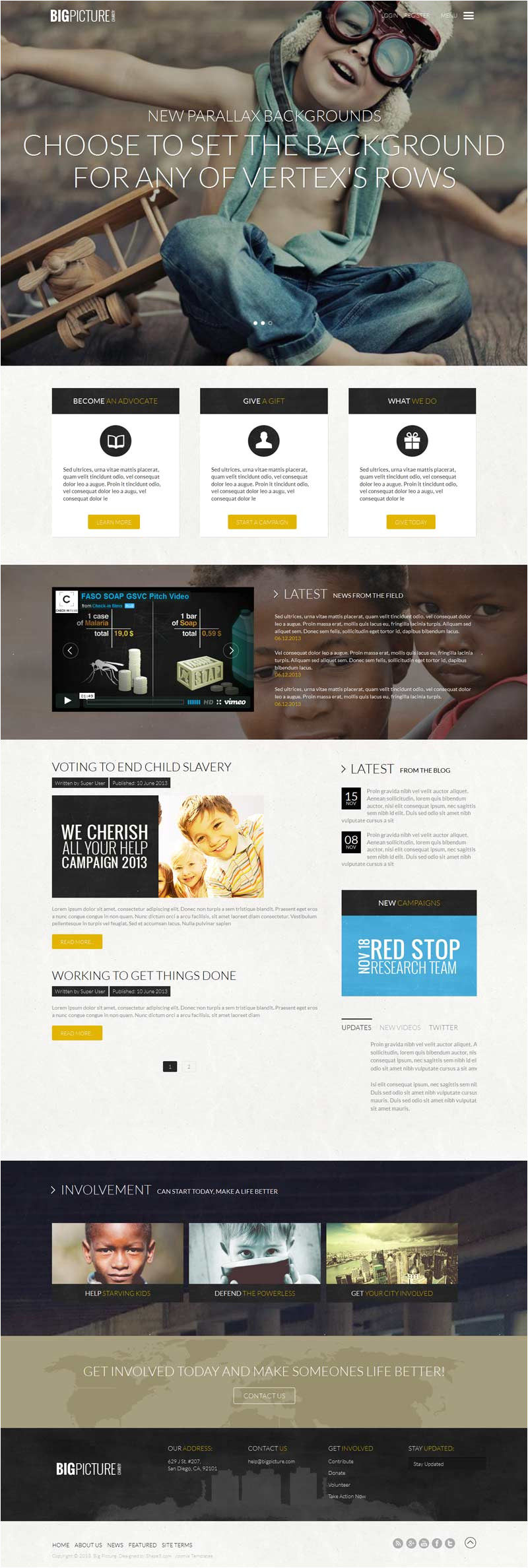big picture charity non profit organization style template