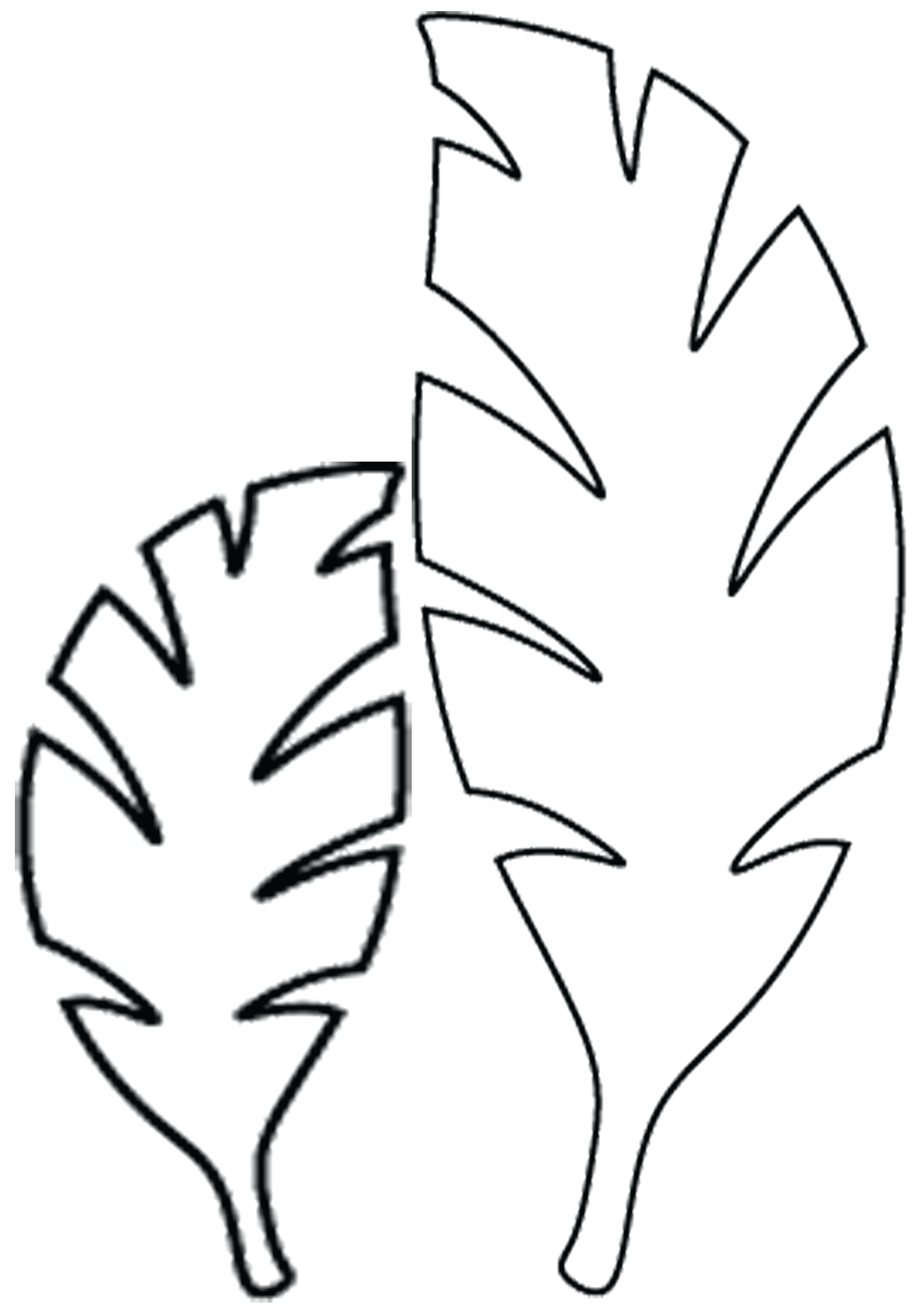 Jungle Leaf Templates to Cut Out Rainforest Leaf Template