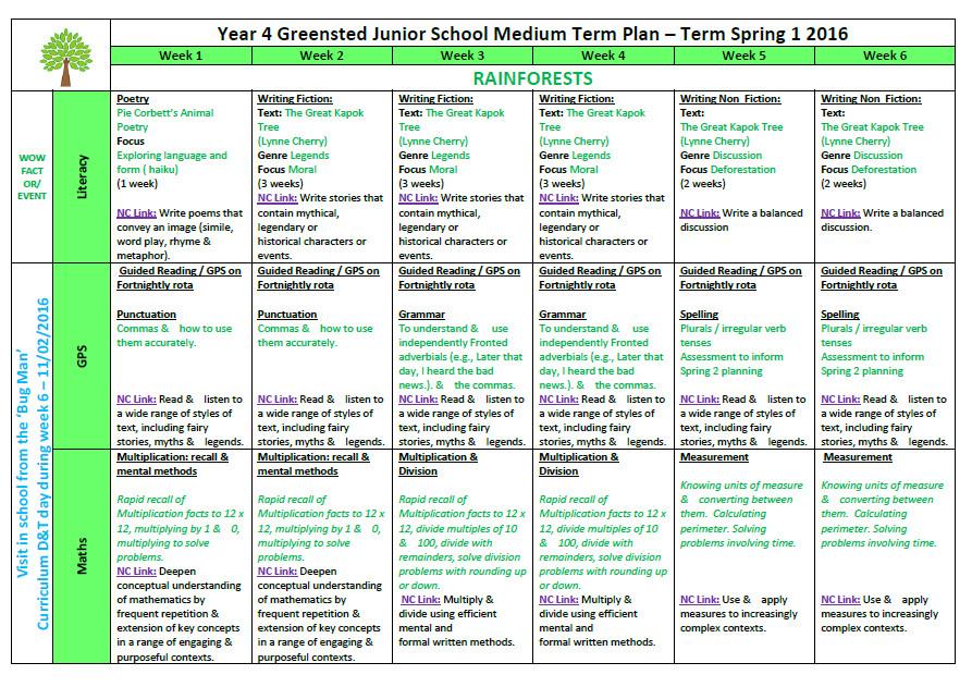 primary school medium term planning